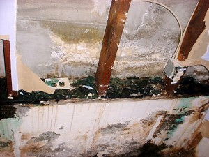 Flood Water Damage Remediation 300x225 Water Damage Specialist